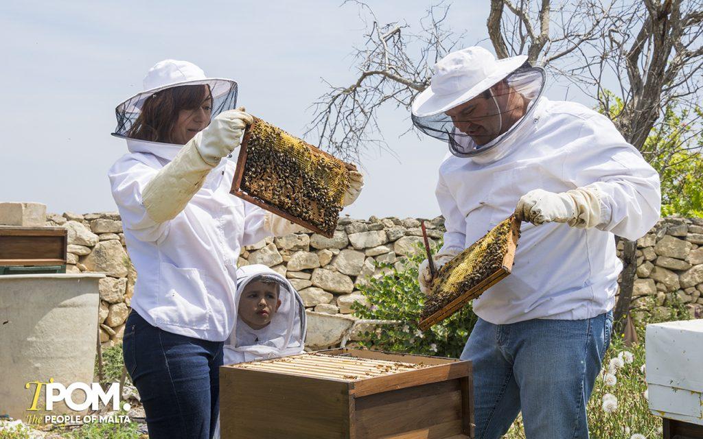 Malta Beekeeper