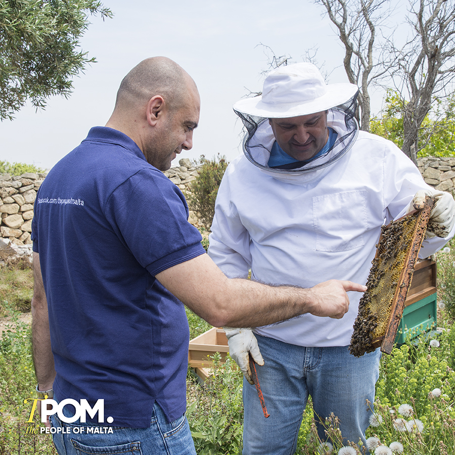 Malta Beekeepers
